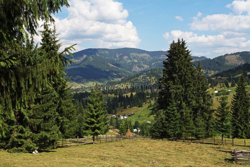 Mooie mening over bergen in platteland van Bucovina stock afbeeldingen