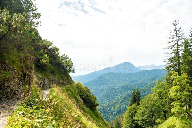 Mooie mening over een kleine Herzogstand-bergweg, bomen en nabijgelegen bergen dichtbij Walchensee-meer, Beieren, Duitsland stock foto