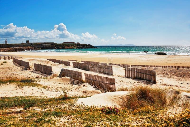 Mooie mening over strand en oceaan stock afbeeldingen
