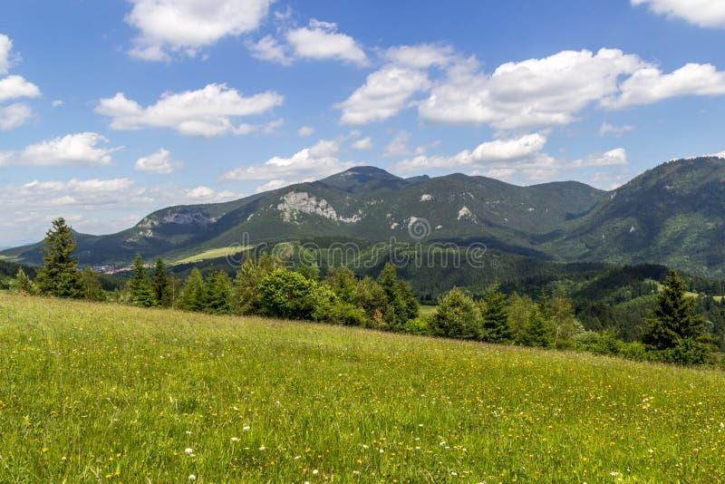 Mooie mening over Velky Choc, Slowakije royalty-vrije stock afbeelding