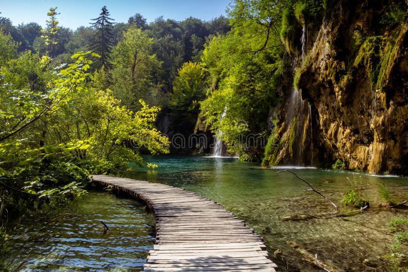 Mooie mening in Plitvice-Meren Nationaal Park Kroatië stock foto's