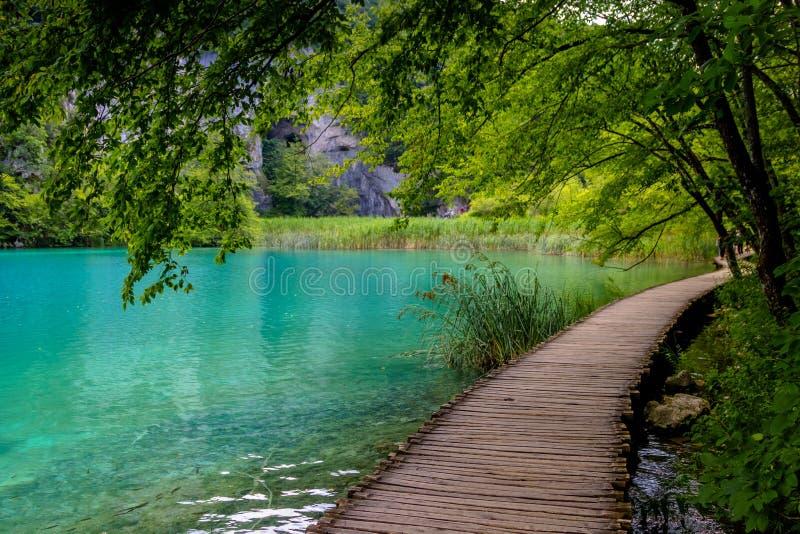 Mooie mening in Plitvice-Meren Nationaal Park Kroatië royalty-vrije stock foto's