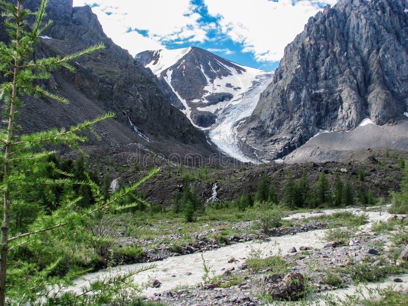 Mooie mening van bergrivier in de zomer, Altai, Rusland royalty-vrije stock afbeeldingen