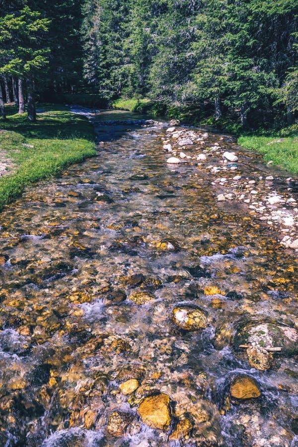 Mooie mening van bergrivier in de zomer Ialomitarivier, Rome royalty-vrije stock foto's