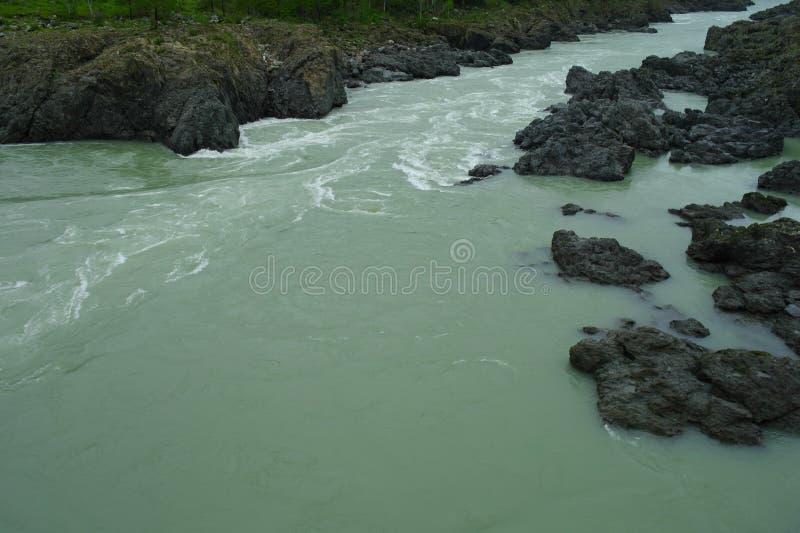 Mooie mening van de bergrivier in de zomer stock foto's