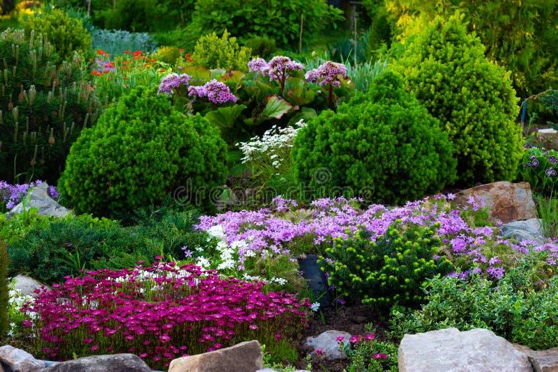 Mooie mening van de gemodelleerde tuin in de binnenplaats Het modelleren het modelleren gebied in de zomer stock afbeeldingen