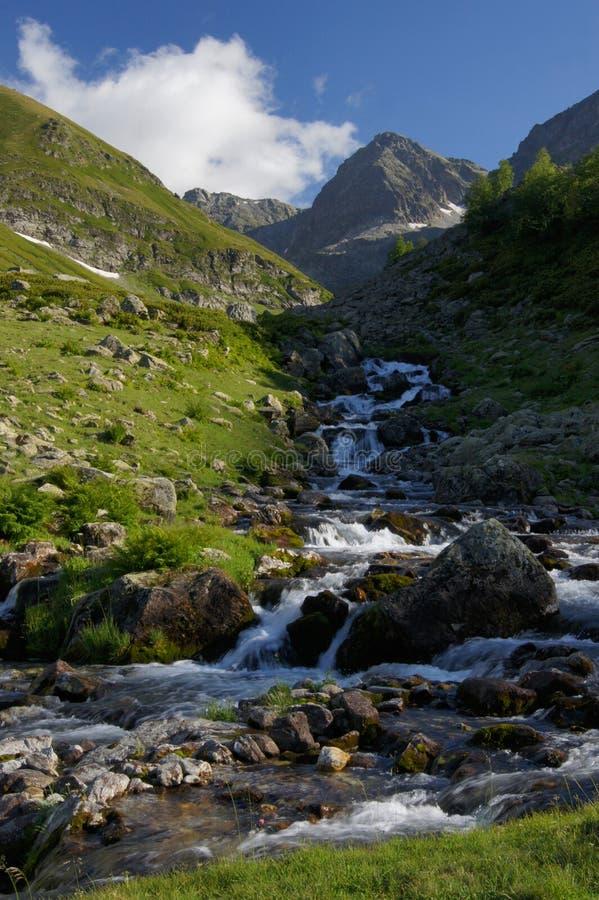 Mooie mening van de kreek in de bergen in de zomer stock fotografie