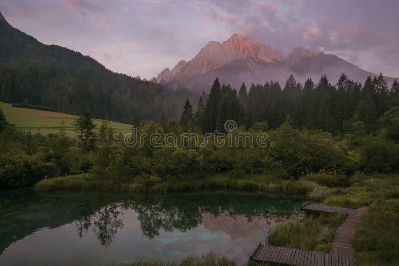Mooie mening van de natuurlijke reserve van Zelenci bij de zomerzonsopgang royalty-vrije stock afbeeldingen
