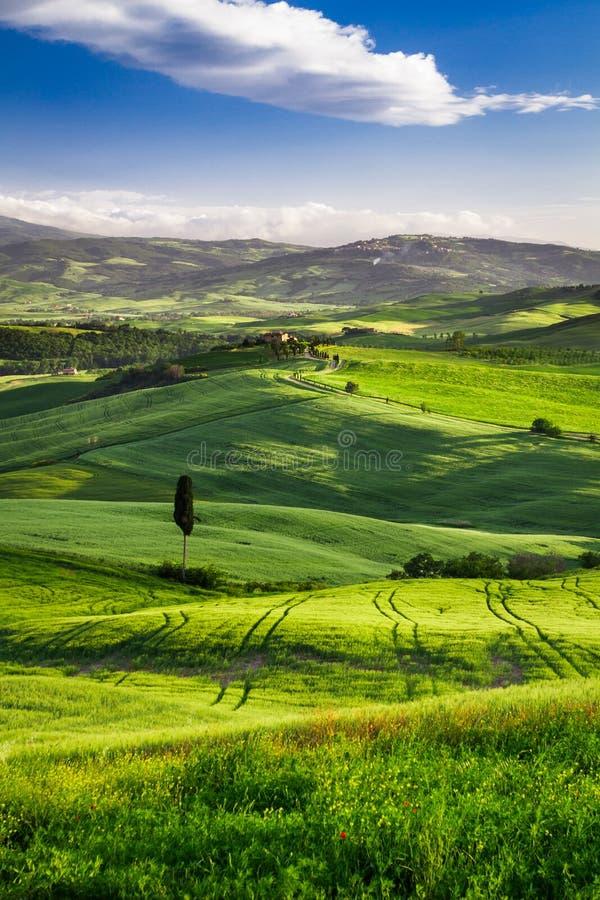 Mooie mening van de zonsondergang over de groene vallei stock afbeeldingen