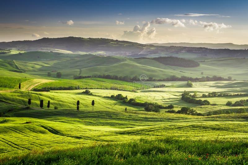 Mooie mening van de zonsondergang over de groene vallei royalty-vrije stock foto's