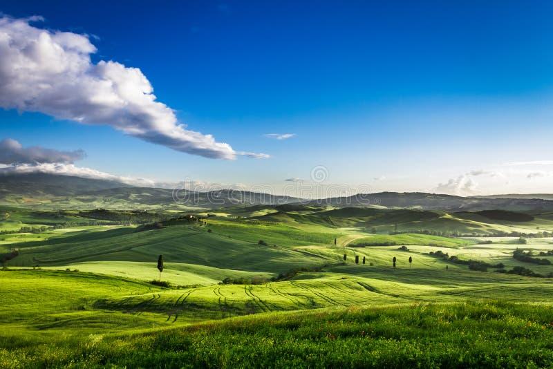 Mooie mening van de zonsondergang over de groene vallei stock foto's