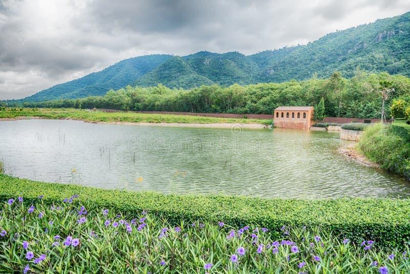 Mooie mening van een klein die meer door groene bomen bij de herfstcl wordt gescherpt royalty-vrije stock afbeelding