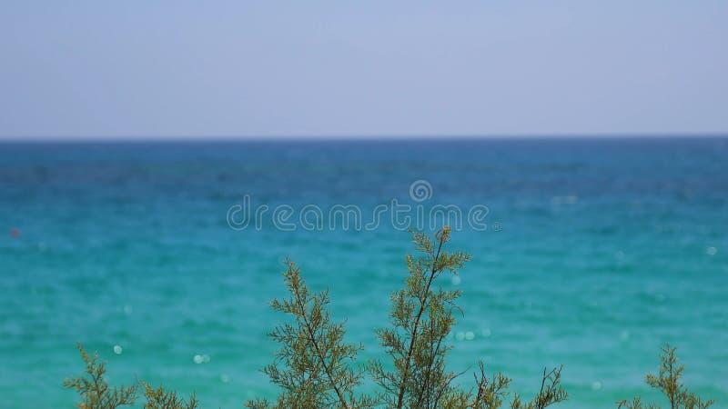 Mooie mening van het blauwe overzees op een Zonnige de zomerdag Concept rust en weekend royalty-vrije stock afbeelding