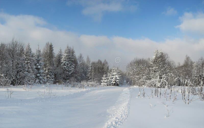 Mooie mening van het de de winterbos en landweg Zuiver en w stock fotografie