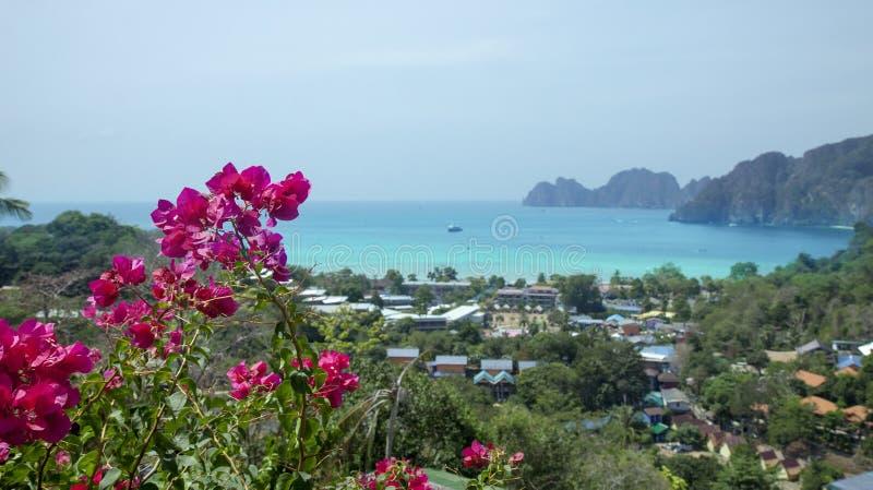 Mooie mening van het overzees, de tropische installaties en de rotsen en de bergen Exotische roze bloemen stock afbeelding