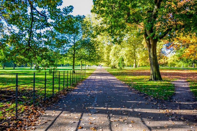 Mooie mening van Hyde Park tijdens de herfstseizoen, Londen, Engeland, het UK stock fotografie