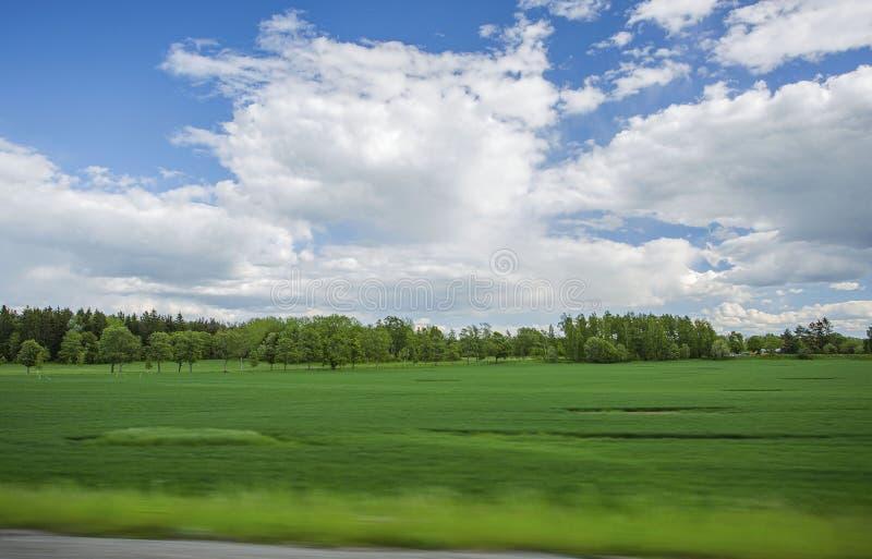 Mooie mening van landschap met groene gebieden, groene bosbomen en blauwe hemel met witte wolken royalty-vrije stock fotografie