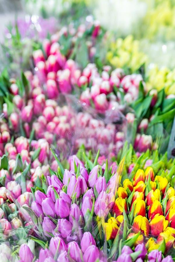 Mooie multicolored bloemboeketten Diverse verse tulpen bij bloemwinkel In het groot of kleinhandelsbloemopslag Installatiepakhuis stock afbeelding