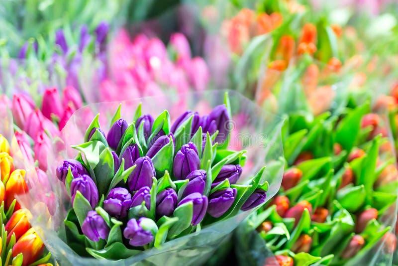 Mooie multicolored bloemboeketten Diverse verse tulpen bij bloemwinkel In het groot of kleinhandelsbloemopslag Installatiepakhuis royalty-vrije stock afbeelding