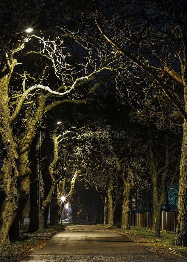 Mooie nachtbeelden royalty-vrije stock afbeeldingen