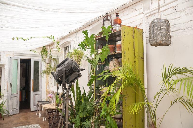 Mooie natuurlijke achtergrond van binneninstallaties, serres Stedelijke wildernis, een plaats voor rust en ontspanning Orchideeën royalty-vrije stock fotografie