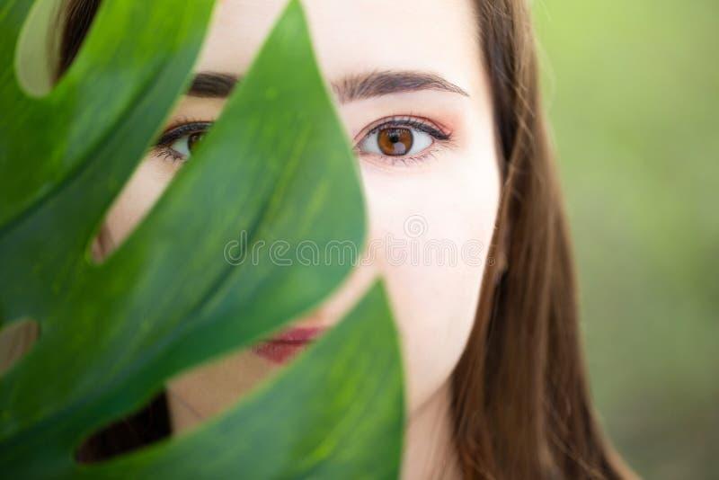 Mooie natuurlijke jonge vrouwenclose-up achter groot monsterablad met groene achtergrond in het hout stock fotografie