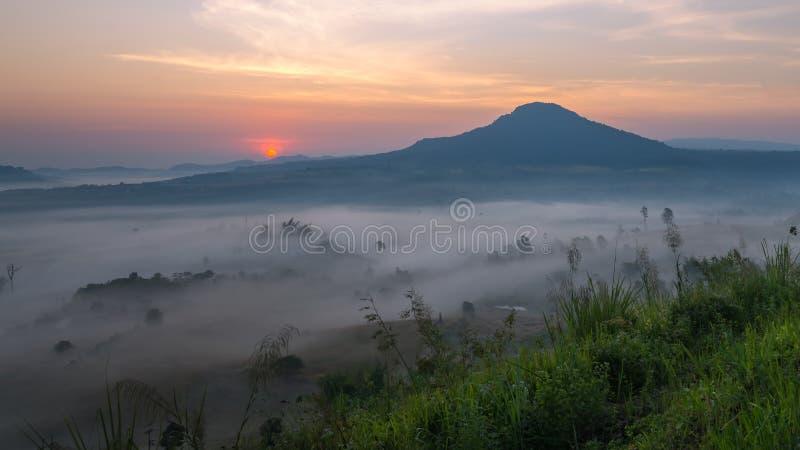 Mooie nevelige ochtendzonsopgang stock foto's