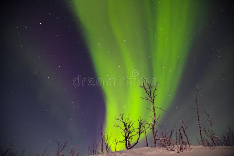 Mooie noordelijke lichten over lappland in finnland royalty-vrije stock foto