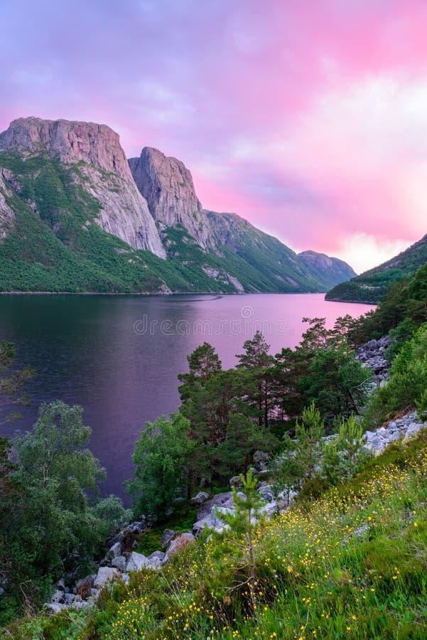 Mooie Noorse roze zonsondergang over een fjord in Noorwegen royalty-vrije stock afbeelding
