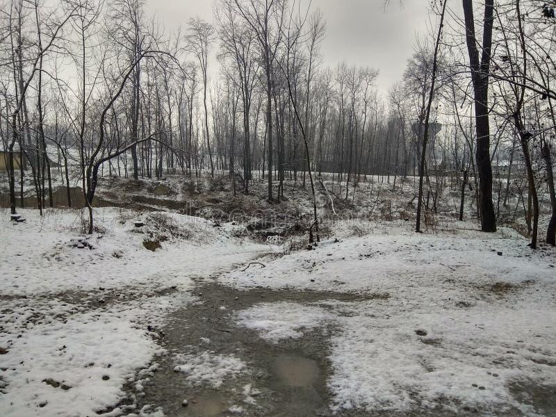 Mooie Ogenblikken in Noord-Kashmir stock fotografie