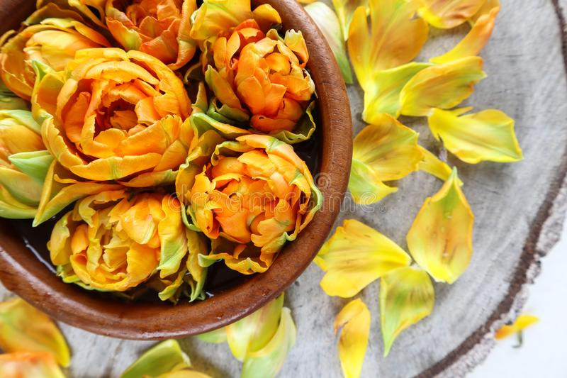 Mooie oranje tulpen in een ronde houten kom op een stomp met bloemblaadjes royalty-vrije stock foto's