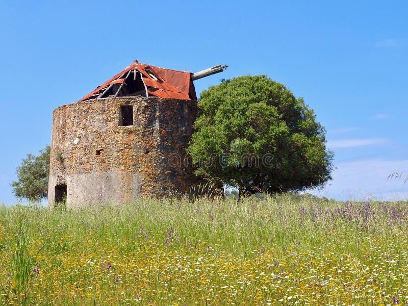 Mooie oude windmolen op een weide met een boom in Portugal stock fotografie