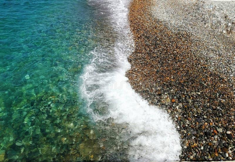 Mooie overzees in Sotchi met shells en het strand stock afbeeldingen