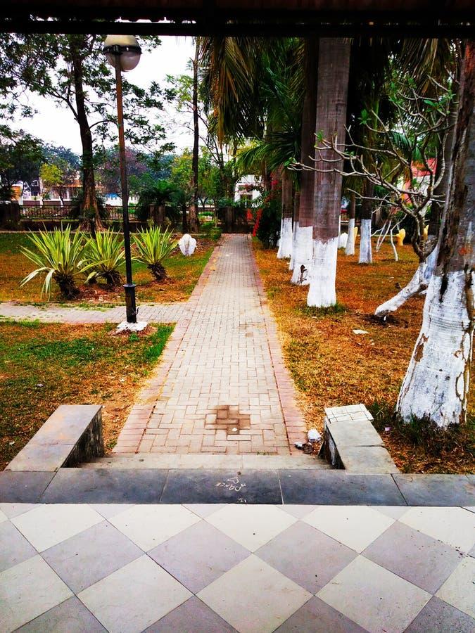 Mooie parkmening en rond bomen stock afbeeldingen
