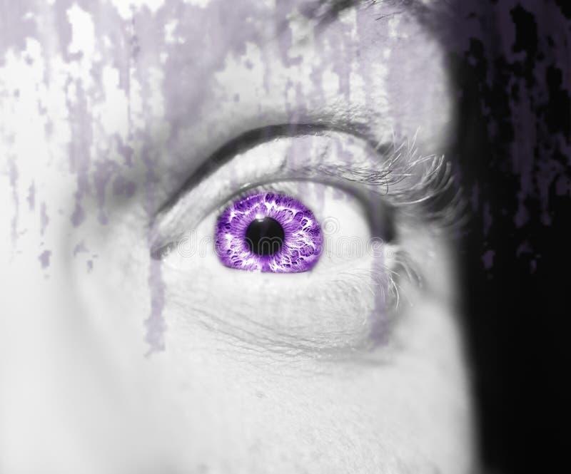 Mooie pienter kijkt oog Sluit omhoog geschoten royalty-vrije stock foto's