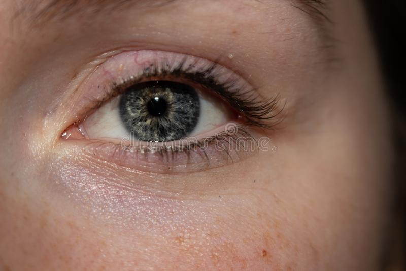 Mooie pienter kijkt unieke het oog van de blauwe vrouw royalty-vrije stock fotografie