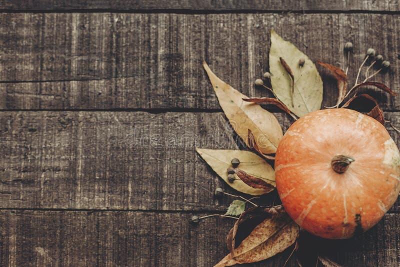 Mooie pompoen met bladeren en bessen op rustieke houten backg stock foto