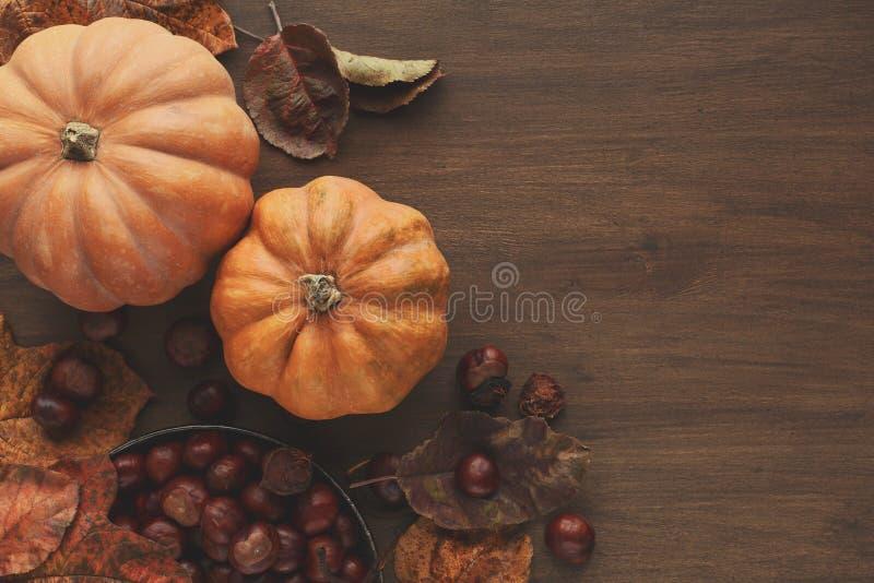 Mooie pompoenen met bladeren en kastanjes op houten lijst royalty-vrije stock foto