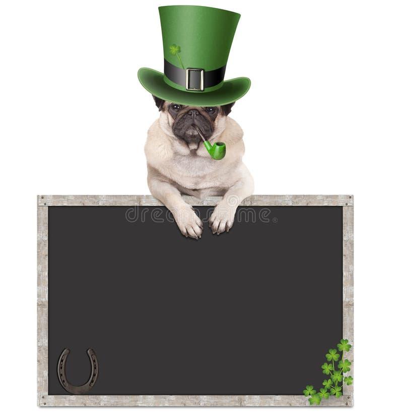 Mooie pug puppyhond met kabouterhoed voor st Patrick ` s dag rokende pijp, die op leeg bordteken leunen met hoef royalty-vrije stock afbeelding