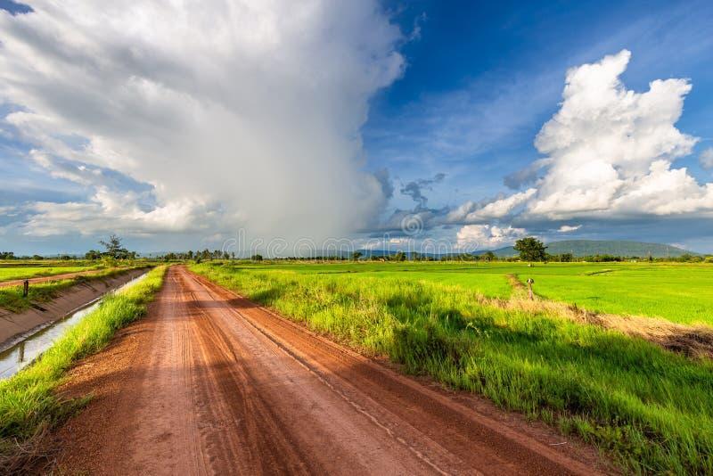 Mooie Regenwolken over het Padieveld stock foto