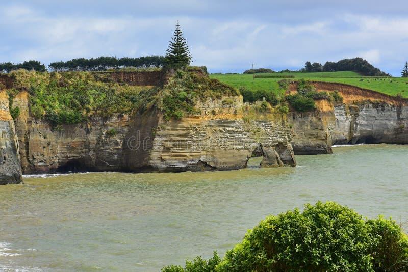 Mooie rek van Witte Klippen langs de Bocht van het Noordentaranaki in Nieuw Zeeland stock afbeelding