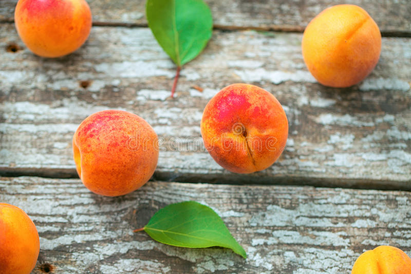 Mooie rijpe oranje abrikozen stock afbeeldingen