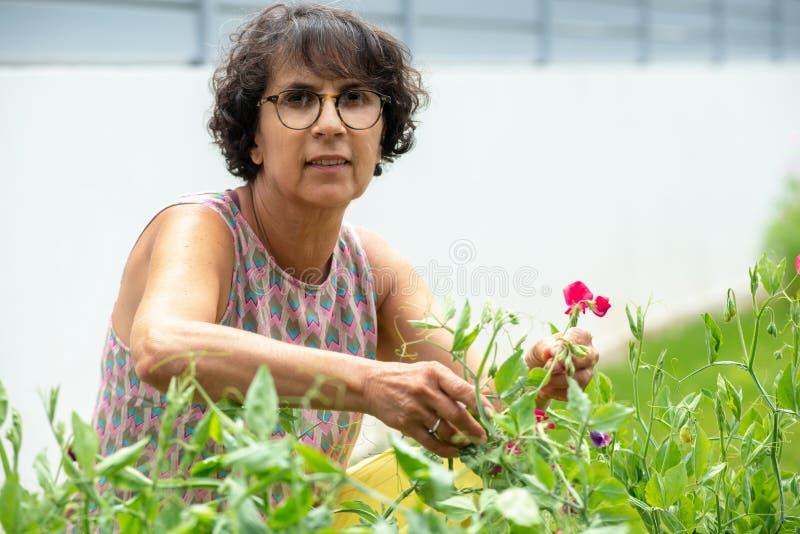 Mooie rijpe vrouw in een tuin met bloemen stock foto