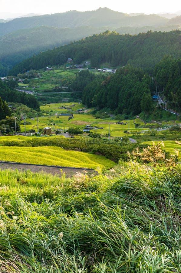 Mooie rijstterrassen van Yotsuya, Aichi-prefectuur, Japan royalty-vrije stock foto