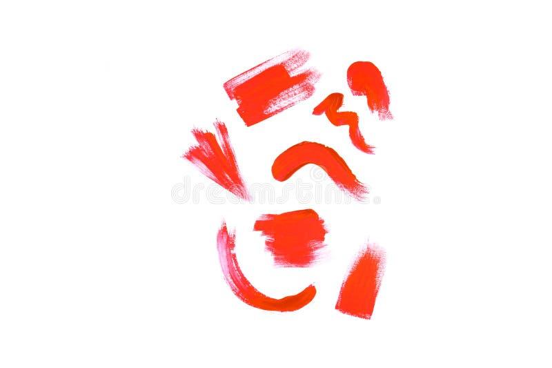 Mooie rode die koraalverf op een witte achtergrond wordt geïsoleerd stock foto