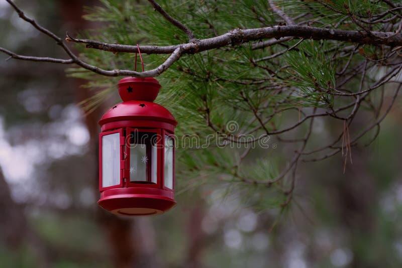 Mooie rode hangende de spartak van de fairytalelantaarn in bos royalty-vrije stock fotografie