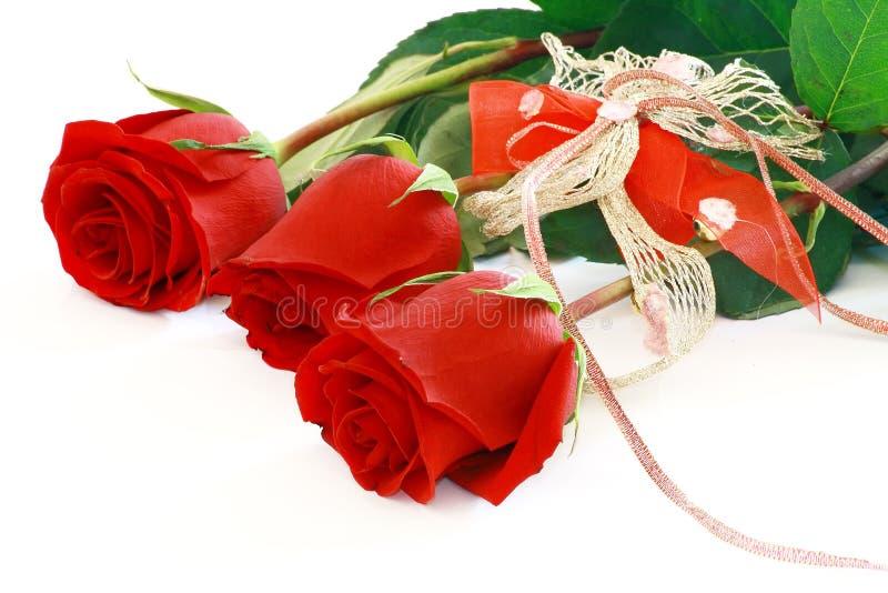 Mooie rode rozen die op wit worden geïsoleerdr royalty-vrije stock fotografie