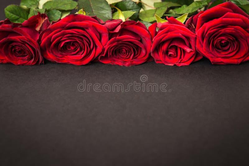 Mooie rode rozen op zwarte achtergrond royalty-vrije stock afbeeldingen