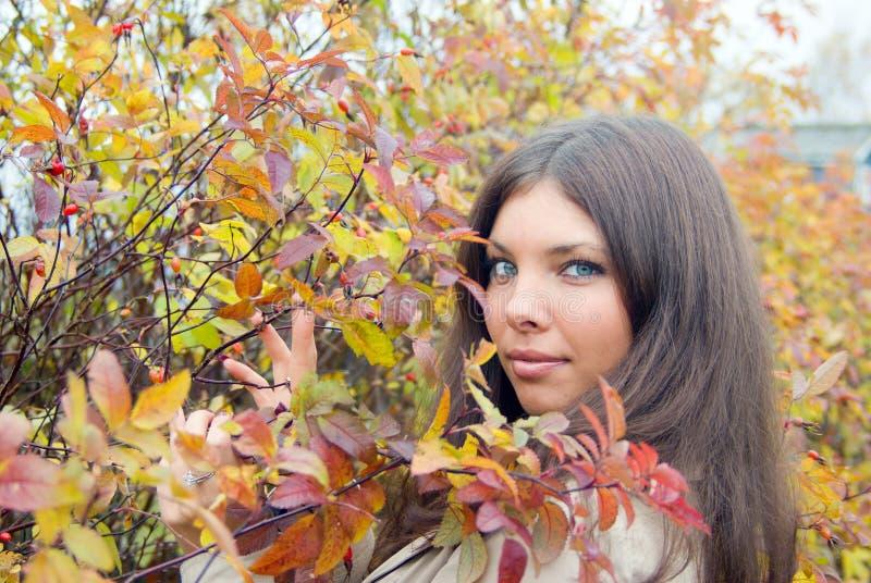 Mooie romantische brunette stock foto's