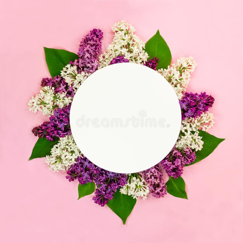 Mooie ronde bloemensamenstelling van witte, purpere lilac bloemen met lege kaart en plaats voor tekst op roze achtergrond De zome royalty-vrije stock fotografie
